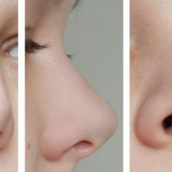 nose_reference_by_miko_noire_d74xggc-fullview